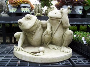 frogs 008