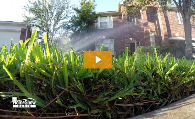 RCW Lawn Care Tips